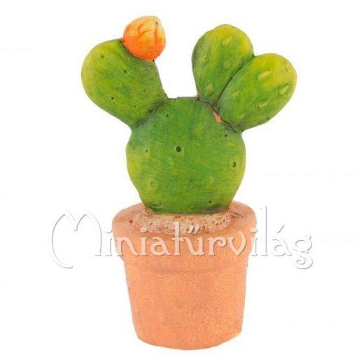 Kerámia Kaktusz